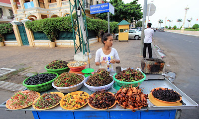 Insect Snack Stall