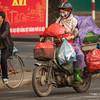 Motorbike Transport-6985