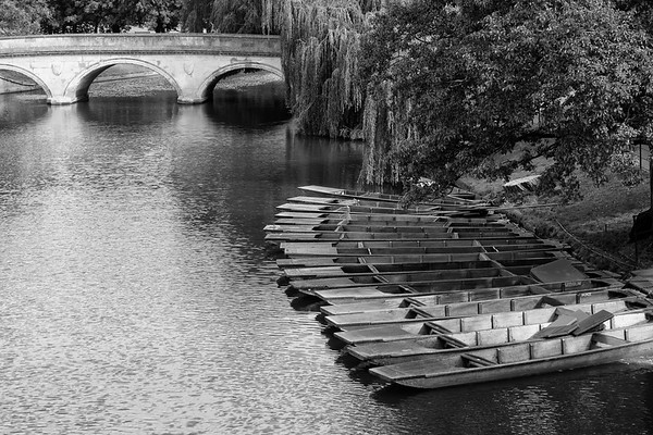 Punts on the River Cam (Aug 2012)