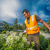 "Armando Arauz culls flowers from the bed in front of Wood Center on his morning duties with the Facilities Services summer grounds crew.  <div class=""ss-paypal-button"">Filename: CAM-12-3481-1.jpg</div><div class=""ss-paypal-button-end"" style=""""></div>"