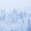 """A winter storm covers the Fairbanks campus with snow on the winter solstice eve day in 2017.  <div class=""""ss-paypal-button"""">Filename: CAM-17-5587-11.jpg</div><div class=""""ss-paypal-button-end""""></div>"""