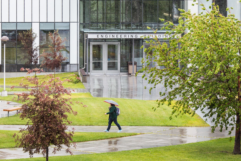 "A light drizzle brings umbrellas on the Fairbanks campus.  <div class=""ss-paypal-button"">Filename: CAM-16-4922-7.jpg</div><div class=""ss-paypal-button-end""></div>"