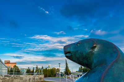 The Nanook sculpture seems to enjoy a beautiful autumn evening on the Fairbanks campus.  Filename: CAM-15-4638-097.jpg