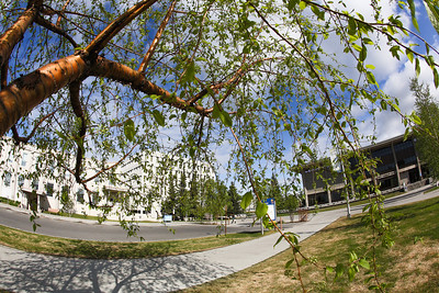 A view of campus on a beautiful morning in May.  Filename: CAM-12-3421-50.jpg