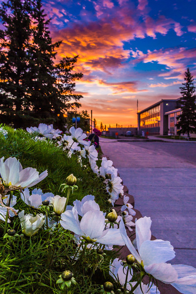 """A beautiful sunrise greets students and employees as they arrive on campus Friday, Sept. 13.  <div class=""""ss-paypal-button"""">Filename: CAM-13-3941-21.jpg</div><div class=""""ss-paypal-button-end"""" style=""""""""></div>"""