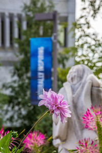 A summer scene in ftont of Constitution Hall on the Fairbanks campus.  Filename: CAM-13-3913-15.jpg