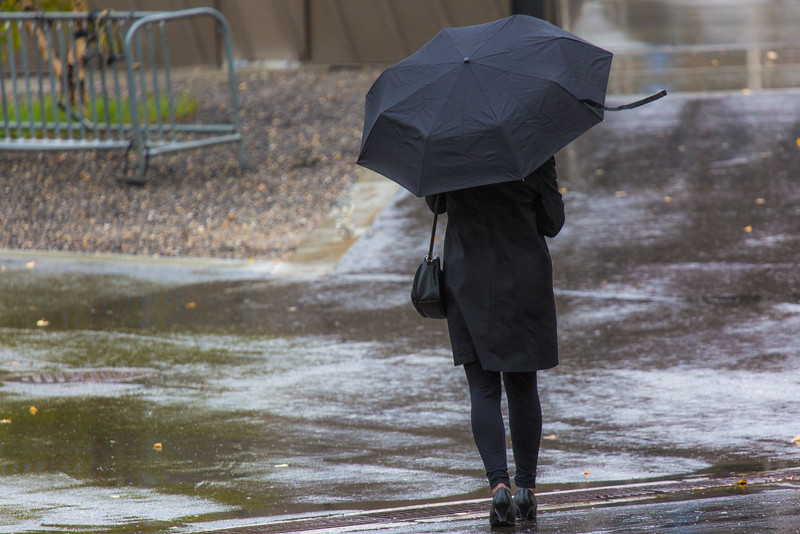 """A number of consecutive rainy days brought out a variety of umbrellas on the Fairbanks campus in August 2015.  <div class=""""ss-paypal-button"""">Filename: CAM-15-4627-35.jpg</div><div class=""""ss-paypal-button-end""""></div>"""