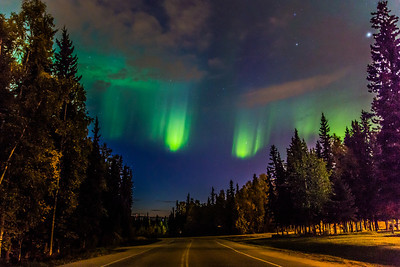 The northern lights appear in the eastern sky above North Tanana Drive on the Fairbanks campus early on a September morning.  Filename: CAM-13-3940-4.jpg