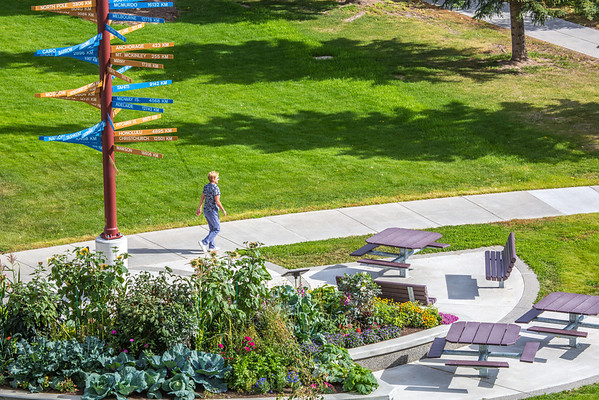 "A pedestrian makes her way past the distinctive milepost sign on UAF's West Ridge.  <div class=""ss-paypal-button"">Filename: CAM-12-3505-23.jpg</div><div class=""ss-paypal-button-end"" style=""""></div>"