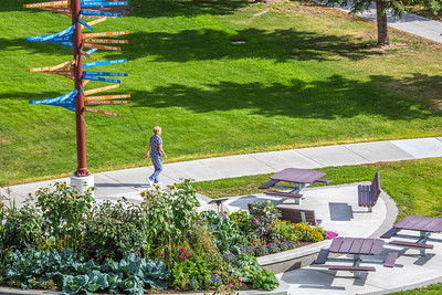A pedestrian makes her way past the distinctive milepost sign on UAF's West Ridge.  Filename: CAM-12-3505-23.jpg