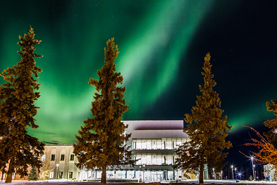 The aurora creates a dynamic display behind the UAF Murie Building on upper campus.  Filename: CAM-16-4788-2-Edit.jpg