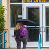 "A number of consecutive rainy days brought out a variety of umbrellas on the Fairbanks campus in August 2015.  <div class=""ss-paypal-button"">Filename: CAM-15-4627-29.jpg</div><div class=""ss-paypal-button-end""></div>"