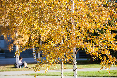 Fall colors surround the campus on a September afternoon.  Filename: CAM-12-3550-26.jpg