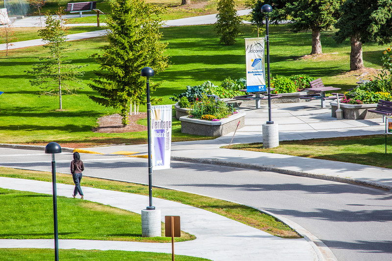 """A lone pedestrian makes her way along a sidewalk on UAF's West Ridge.  <div class=""""ss-paypal-button"""">Filename: CAM-12-3505-16.jpg</div><div class=""""ss-paypal-button-end"""" style=""""""""></div>"""