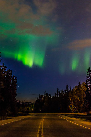 The northern lights appear in the eastern sky above North Tanana Drive on the Fairbanks campus early on a September morning.  Filename: CAM-13-3940-5.jpg