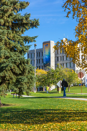 Students walk around campus on a September day.  Filename: CAM-13-3938-36.jpg