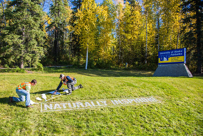 Employees with UAF's grounds crew paint the brand slogan on the lawn near the west entrance to campus.  Filename: CAM-12-3539-01.jpg