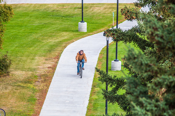 """A lone cyclist makes his way along a sidewalk on UAF's West Ridge.  <div class=""""ss-paypal-button"""">Filename: CAM-12-3505-07.jpg</div><div class=""""ss-paypal-button-end"""" style=""""""""></div>"""