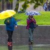 "A number of consecutive rainy days brought out a variety of umbrellas on the Fairbanks campus in August 2015.  <div class=""ss-paypal-button"">Filename: CAM-15-4627-63.jpg</div><div class=""ss-paypal-button-end""></div>"