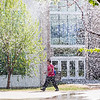 "A student walks in front of the Duckering Building while Facility Services waters the lawns with sprinkler systems around campus Wednesday morning.  <div class=""ss-paypal-button"">Filename: CAM-12-3421-83.jpg</div><div class=""ss-paypal-button-end"" style=""""></div>"