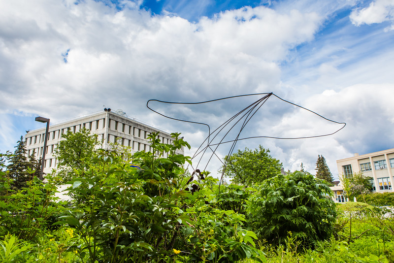 """A sculpture of a whale fluke is seen near the Fine Arts Complex on the Fairbanks campus.  <div class=""""ss-paypal-button"""">Filename: CAM-16-4917-39.jpg</div><div class=""""ss-paypal-button-end""""></div>"""
