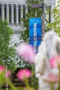 A summer scene in ftont of Constitution Hall on the Fairbanks campus.  Filename: CAM-13-3913-24.jpg