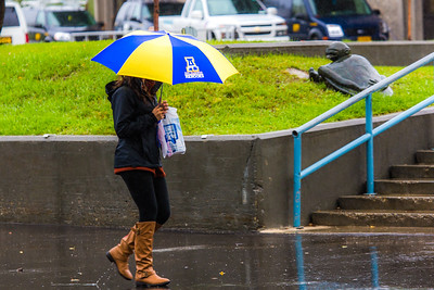 A number of consecutive rainy days brought out a variety of umbrellas on the Fairbanks campus in August 2015.  Filename: CAM-15-4627-91.jpg