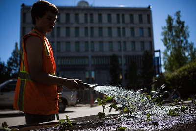 After a late start in the season, UAF Facilities Services grounds crew plant flowers around campus, Tuesday, June 18, 2013.  Filename: CAM-13-3864-71.jpg