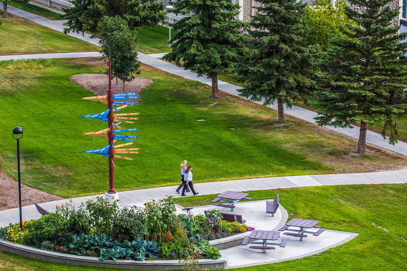 """Pedestrians make their way past the distinctive milepost sign on UAF's West Ridge.  <div class=""""ss-paypal-button"""">Filename: CAM-12-3505-38.jpg</div><div class=""""ss-paypal-button-end"""" style=""""""""></div>"""