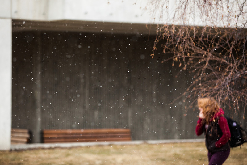 "A late season snow falls on campus May 17.  <div class=""ss-paypal-button"">Filename: CAM-13-3838-8.jpg</div><div class=""ss-paypal-button-end"" style=""""></div>"