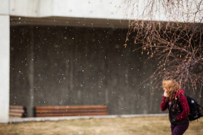 A late season snow falls on campus May 17.  Filename: CAM-13-3838-8.jpg