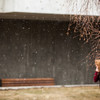 """A late season snow falls on campus May 17.  <div class=""""ss-paypal-button"""">Filename: CAM-13-3838-8.jpg</div><div class=""""ss-paypal-button-end"""" style=""""""""></div>"""