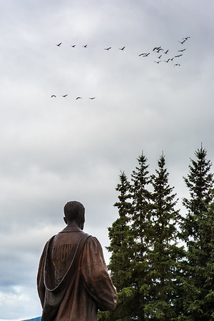 Migrating sandhill cranes fly over the statue of Charles Bunnell in August 2015.  Filename: CAM-15-4634-001.jpg