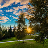 "The setting sun bursts through the trees in front of Lathrop Hall on the Fairbanks campus during Orientation Week at the start of the fall 2015 semester.  <div class=""ss-paypal-button"">Filename: CAM-15-4638-098.jpg</div><div class=""ss-paypal-button-end""></div>"