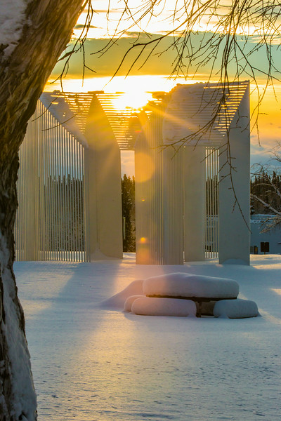 """January afternoon sunshine filters through the Illysian sculpture on the Fairbanks campus.  <div class=""""ss-paypal-button"""">Filename: CAM-14-4039-12.jpg</div><div class=""""ss-paypal-button-end""""></div>"""