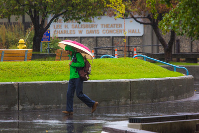A number of consecutive rainy days brought out a variety of umbrellas on the Fairbanks campus in August 2015.  Filename: CAM-15-4627-77.jpg