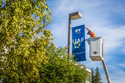 Facilities Services employee Ray Ward installs a UAF100 banner on a light post in front of Constitution Hall in preparation for the university's centennial anniversary.  Filename: CAM-16-4952-8.jpg