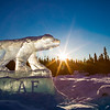 "The Nanook ice sculpture greets visitors to campus from its home near the kiosk along Thompson Drive.  <div class=""ss-paypal-button"">Filename: CAM-12-3327-04.jpg</div><div class=""ss-paypal-button-end"" style=""""></div>"
