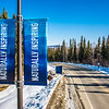 "New welcome banners posted near the Farmers' Loop Road entrance to the Fairbanks campus.  <div class=""ss-paypal-button"">Filename: CAM-13-3779-18.jpg</div><div class=""ss-paypal-button-end"" style=""""></div>"
