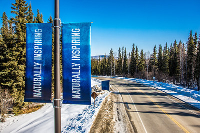 New welcome banners posted near the Farmers' Loop Road entrance to the Fairbanks campus.  Filename: CAM-13-3779-18.jpg