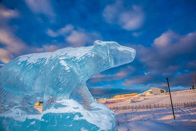 An ice sculpture of the Nanook mascot greets visitors to campus from its home in the roundabout.  Filename: CAM-13-3725-3.jpg
