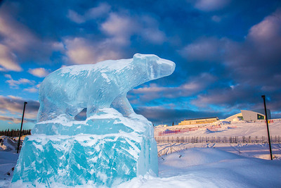 An ice sculpture of the Nanook mascot greets visitors to campus from its home in the roundabout.  Filename: CAM-13-3725-2.jpg