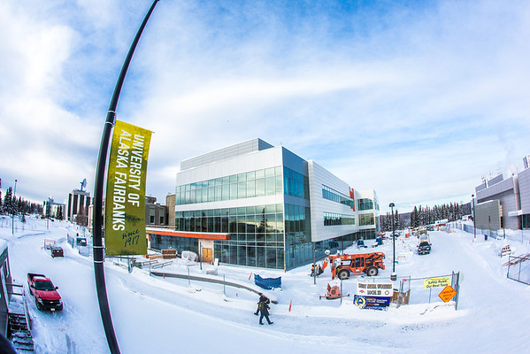 """New street banners help add color and a consistent branded message at various locations around the Fairbanks campus.  <div class=""""ss-paypal-button"""">Filename: CAM-13-3722-84.jpg</div><div class=""""ss-paypal-button-end"""" style=""""""""></div>"""