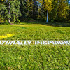 """UAF's new brand tagline greets visitors to the west entrance to campus.  <div class=""""ss-paypal-button"""">Filename: CAM-12-3539-32.jpg</div><div class=""""ss-paypal-button-end"""" style=""""""""></div>"""