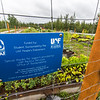 "UAF's Office of Sustainability maintains a community garden for campus residents and anyone else interested in producing local vegetables.  <div class=""ss-paypal-button"">Filename: CAM-15-4609-03.jpg</div><div class=""ss-paypal-button-end""></div>"