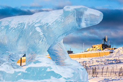An ice sculpture of the Nanook mascot greets visitors to campus from its home in the roundabout.  Filename: CAM-13-3725-13.jpg