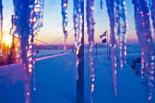 """Icicles hang from the roof of one of the buildings at the Fairbanks Experiment Farm on a cold morning in January.  <div class=""""ss-paypal-button"""">Filename: CAM-12-3257-09.jpg</div><div class=""""ss-paypal-button-end"""" style=""""""""></div>"""