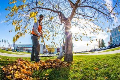 Grounds crew supervisor Raif Kennedy rakes leaves in Cornerstone Plaza on a September afternoon.  Filename: CAM-12-3564-16.jpg