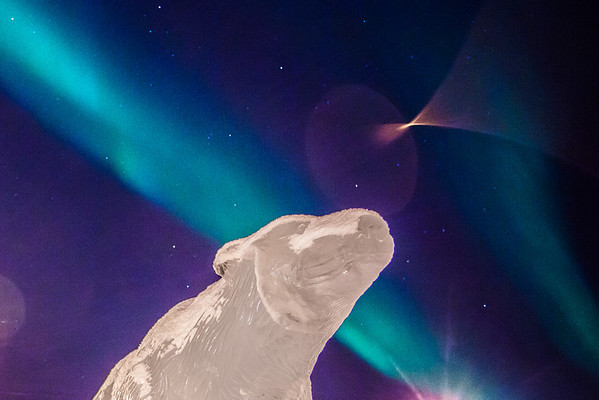 """The aurora borealis floats above the ice scultpure of the Nanook in the roundabout on the Fairbanks campus.  <div class=""""ss-paypal-button"""">Filename: CAM-13-3724-3.jpg</div><div class=""""ss-paypal-button-end"""" style=""""""""></div>"""