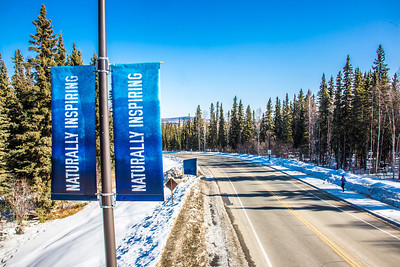 New welcome banners posted near the Farmers' Loop Road entrance to the Fairbanks campus.  Filename: CAM-13-3779-21.jpg